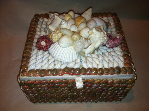 Shell Jewelry Box Red