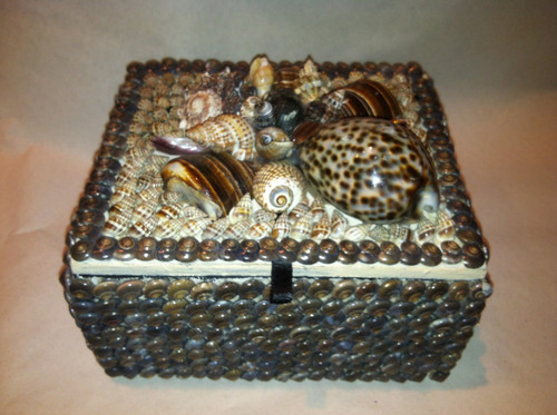 Shell Jewelry Box Brown