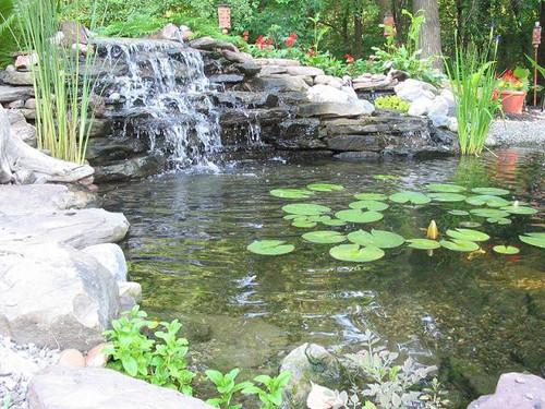 EasyPro Medium Aquafalls with Faux Rock - Matala Pads