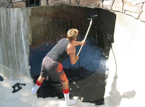 Black Pond Shield Epoxy - 1 Qrt.
