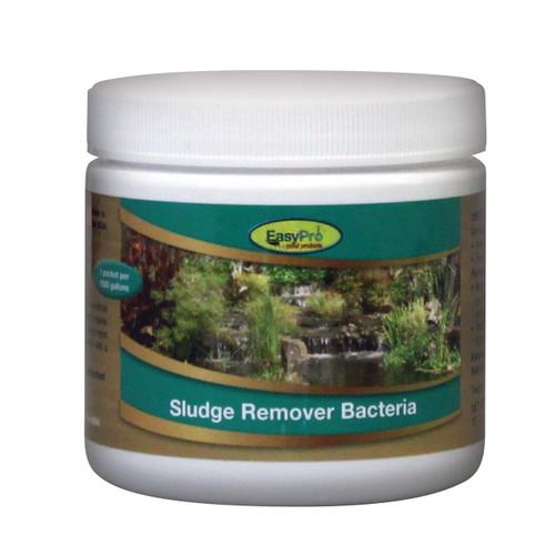 EasyPro Sludge Remover Bacteria - Dry Powder