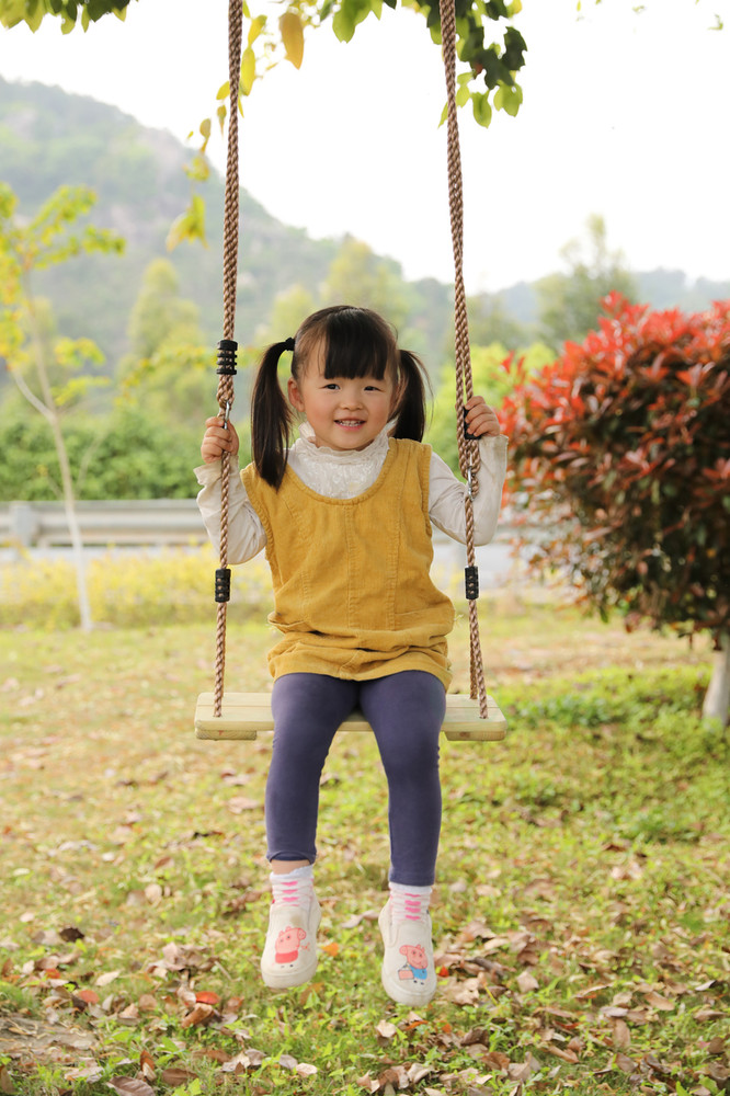 Outdoor Wooden Tree Swing with Hanging Ropes