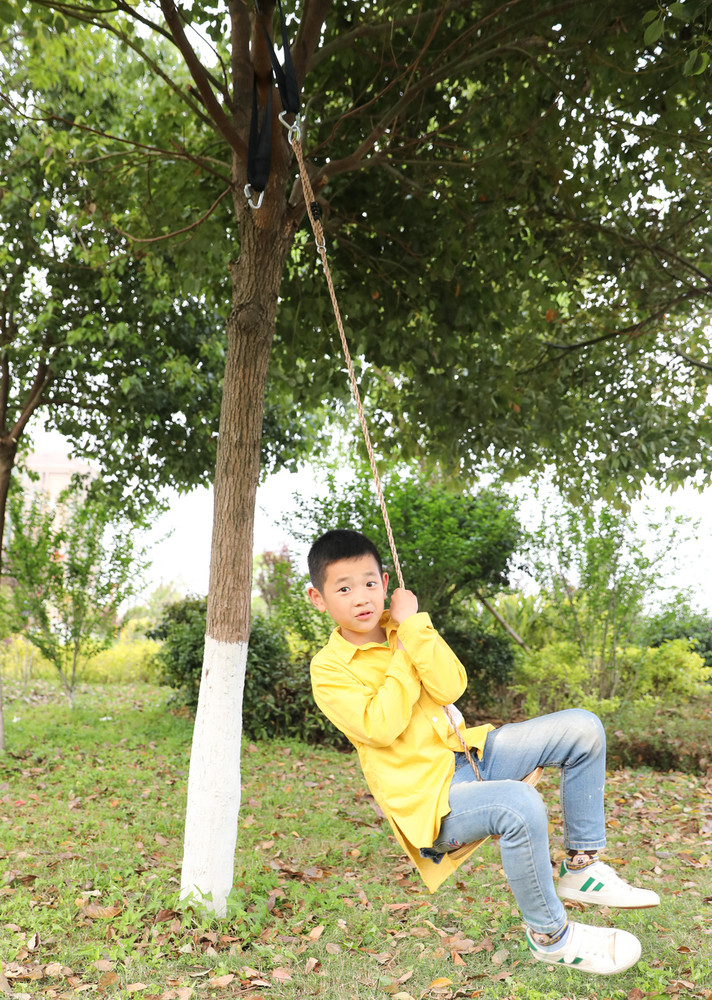 Wooden Round Disc Plate Swing Seat With Hanging Rope