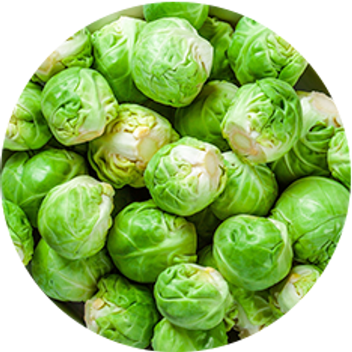 Brussel Sprout  2kg