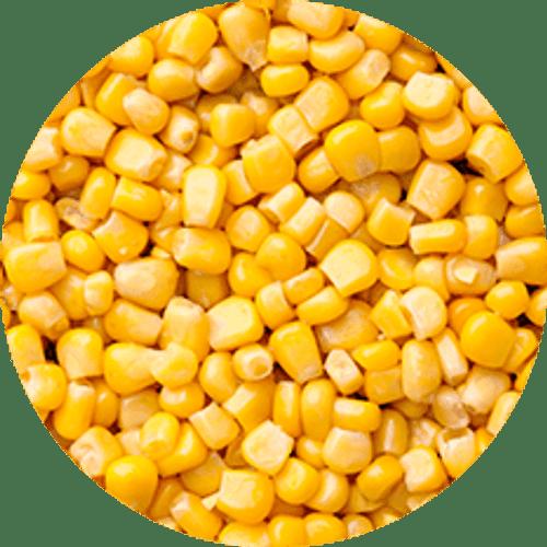 Corn Kernels 2kg