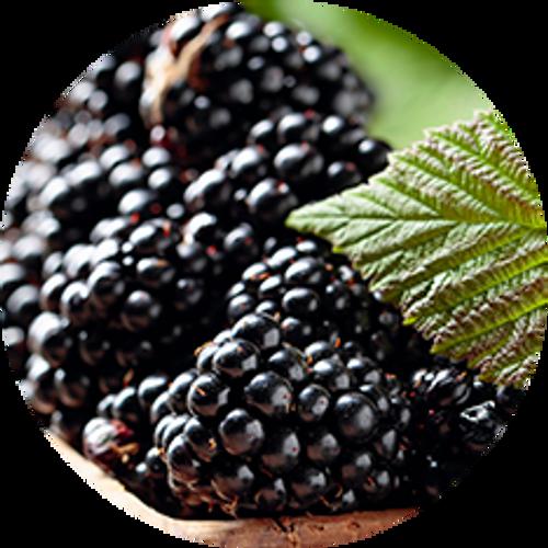 Blackberries 1kg