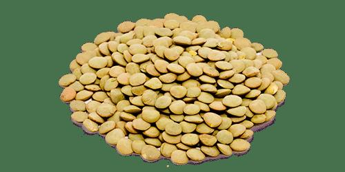 Lentils - Green 5kg