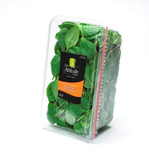 Fresh Attitude Baby Spinach 454g