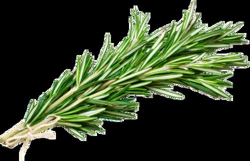 Fresh Thyme Green Repack 3 Each