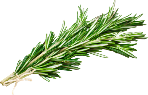 Fresh Rosemary Repack 3 Each