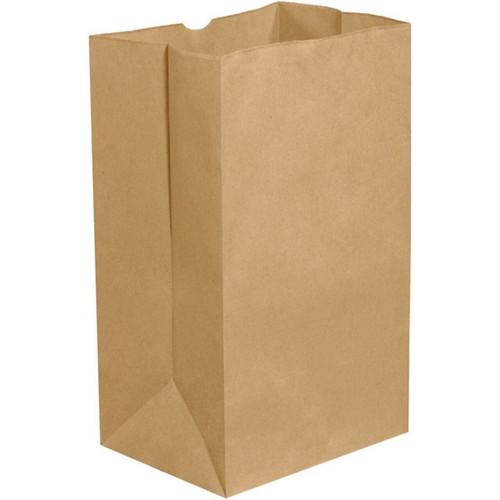 Paper Bag Plain Kraft 8lb 500/pk