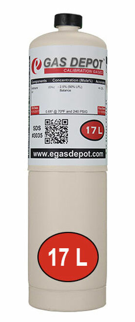 17 Liter- Methane 100 ppm/ Air Portagas Equivalent 10405000