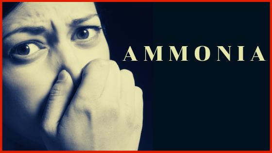 Ammonia (NH3)-Calibration Gas