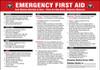 "Emergency First Aid  Instructions ..Bleeding . Broken Bones ..Burns..Shock ..CPR. 14"" x 20"""