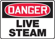 Danger - Live Steam