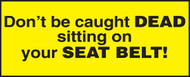 Don''t Be Caught Dead Sitting On Your Seat Belt!