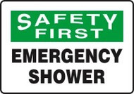 Safety First Emergency Shower