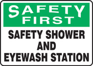 Safety First - Safety Shower And Eyewash Station