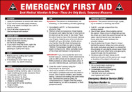 "Emergency First Aid  Instructions ..Bleeding . Broken Bones ..Burns..Shock ..CPR. 14"" x 20"""
