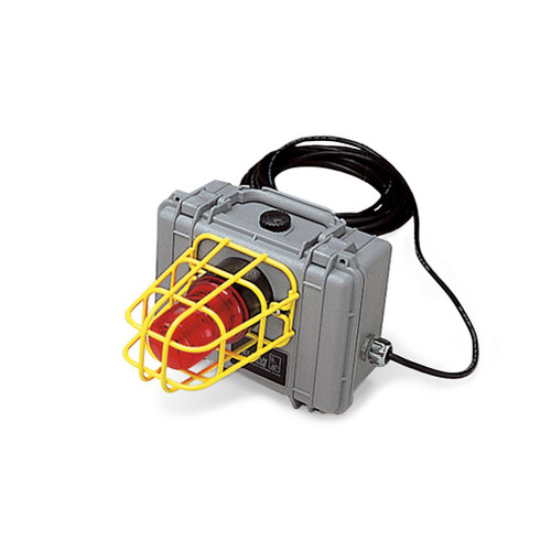 Allegro 9871-01 Remote CO Alarm/Strobe Light System