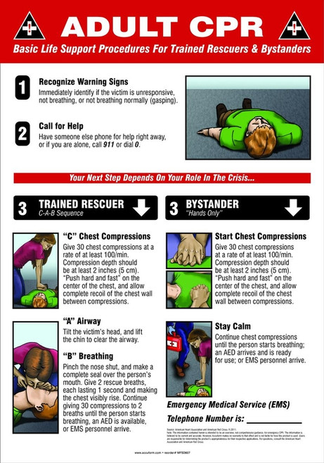 Adult CPR Basic Life Support Procedures For Trained Rescuers & Bystanders ....