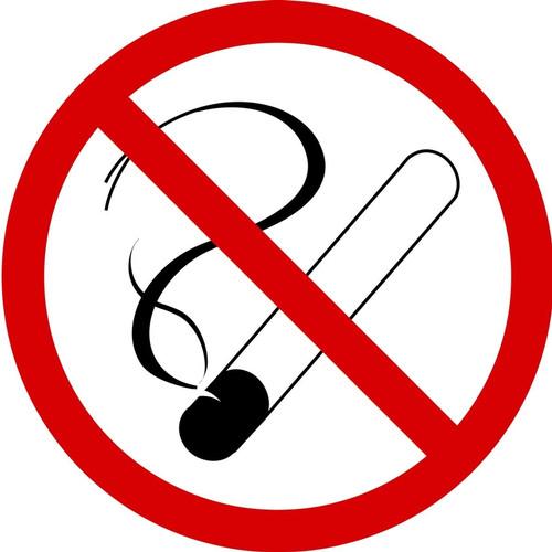 MISO510VA ISO Prohibition Safety Sign- No Smoking Sign