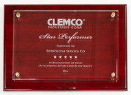 ​We are proud to announce that we've been named Clemco's Star Performer!