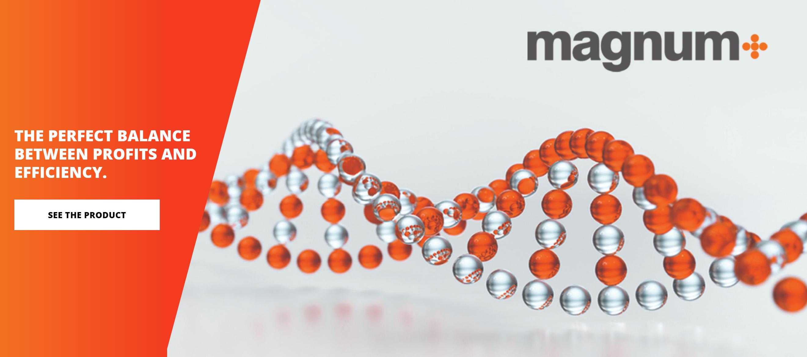 Magnum+ Tire Balancing Beads
