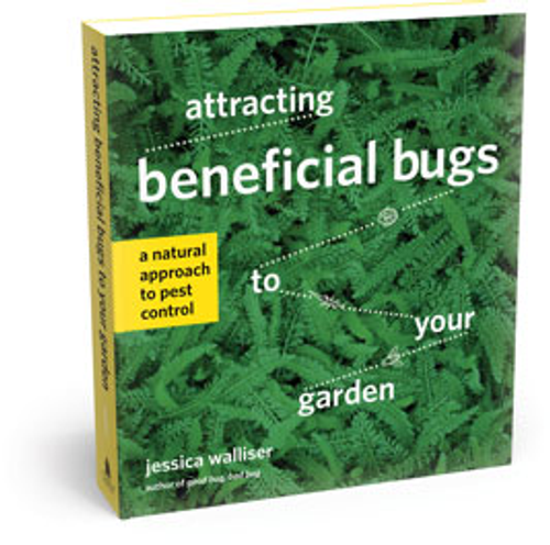 Attracting Beneficial Bugs to Your Garden: A Natural Approach to Pest Control by Jessica Wallisler