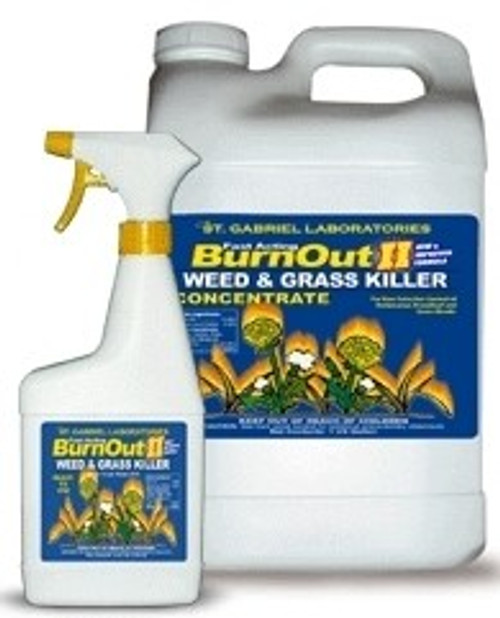 BurnOut II Weed & Grass 24 oz