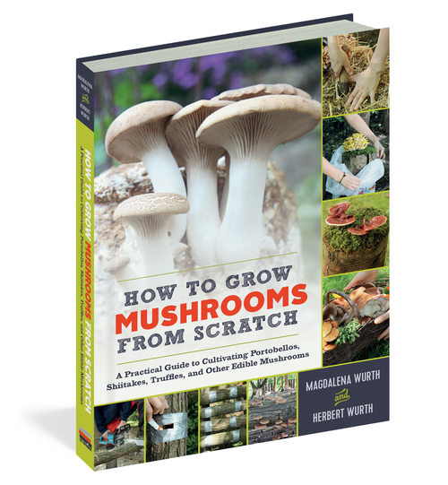 How to Grow Mushrooms from Scratch by Magdalena Wurth & Herbert Wurth