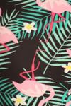 Brushed Palm Frond Flamingo Plus Size Leggings - 3X-5X