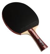 DHS 4* Racket Ping Pong Depot Table Tennis Equipment 2