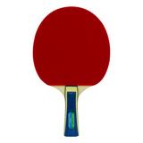 Butterfly Wakaba 1000 Racket 4