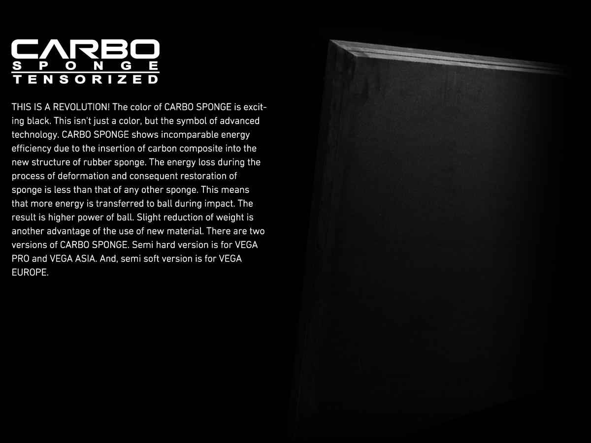 tech-carbo-sponge2020.png