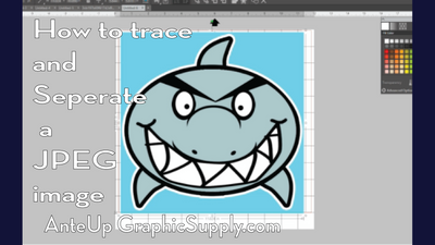 How to Trace and separate a jpeg image in the Silhouette studio software.