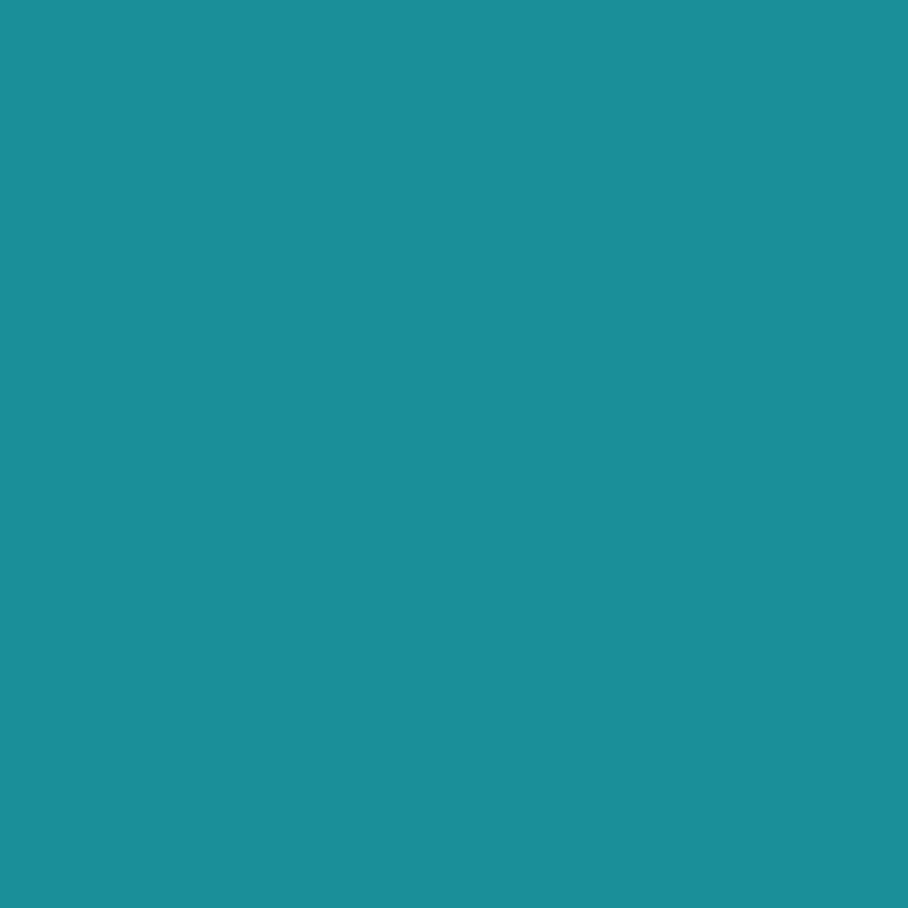 Oracal 651 Adhesive Vinyl Turquoise Blue 066 12 Quot X 10