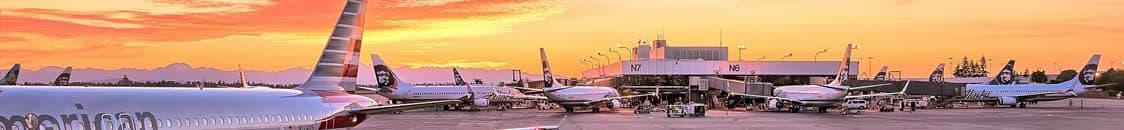 airline-pet-policies-rev1-opt.jpg