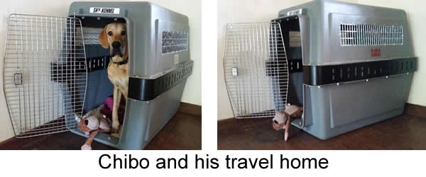 chibo-crate-extension.jpg