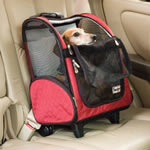 Your roll around carrier can be a carseat