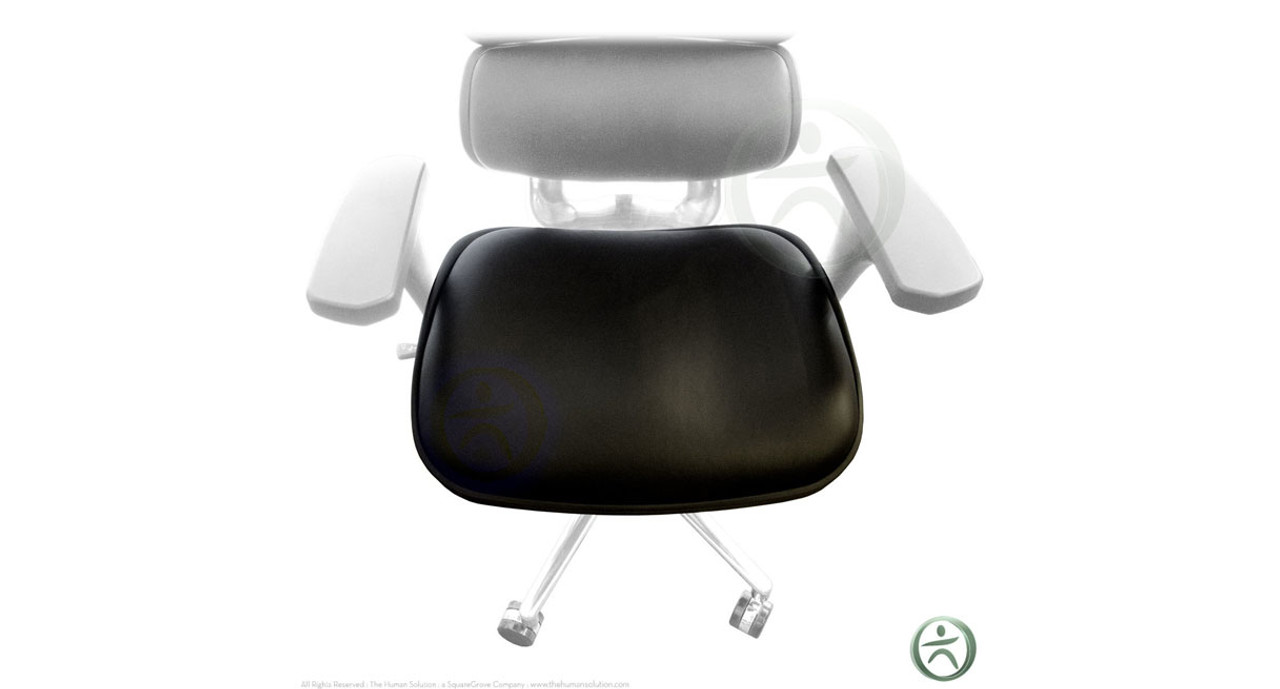 Outstanding Raynor Ergohuman Chair Replacement Leather Seat For Le9Erg And Le10Erglo Ibusinesslaw Wood Chair Design Ideas Ibusinesslaworg