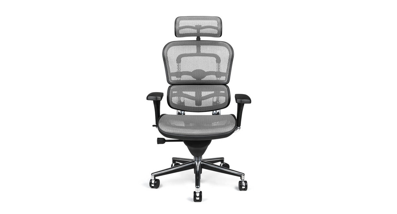 3c4993672b4 The Raynor Ergohuman Chair is a comfy and stylish addition to your office