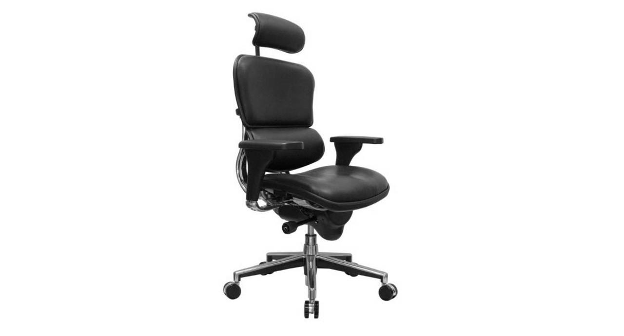 Fantastic Raynor Ergohuman Leather Chair With Headrest Le9Erg Ibusinesslaw Wood Chair Design Ideas Ibusinesslaworg