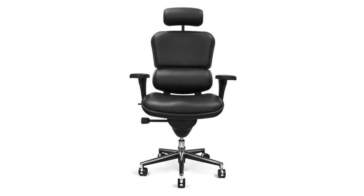 Terrific Raynor Ergohuman Leather Chair With Headrest Le9Erg Ibusinesslaw Wood Chair Design Ideas Ibusinesslaworg