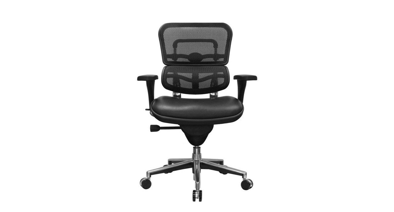 Raynor Ergohuman Chair Mesh Chair With Leather Seat Lem6erglo