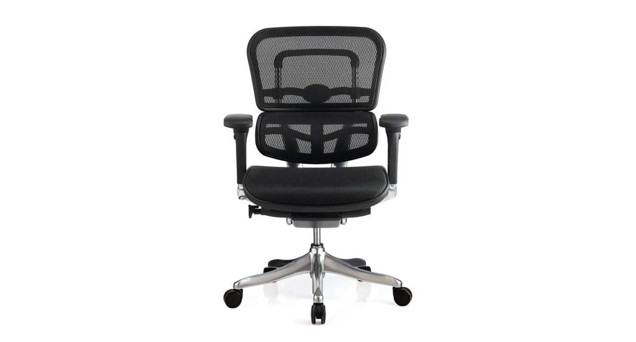 Fine Raynor Ergo Elite Chair Me5Ergltlo Home Interior And Landscaping Ymoonbapapsignezvosmurscom