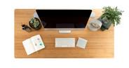 60x30 Bamboo Rectangular Desk (top down view)