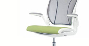 The Humanscale Diffrient World Chair Review