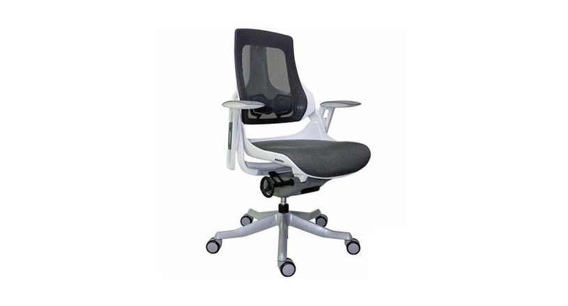 Raynor Eurotech Wau Chair  (Discontinued)