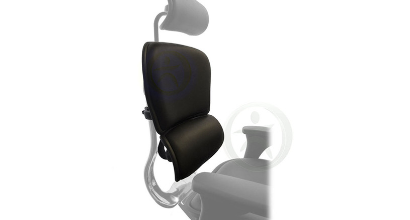 Keep your current chair, just replace the chair back with the Raynor Ergohuman Chair Replacement Leather Back for LE9ERG and LE10ERGLO
